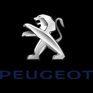 Peugeot Trackstar